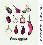 hand drawn vector illustration... | Shutterstock .eps vector #1136967080