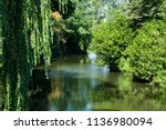park with pond in hoorn  the... | Shutterstock . vector #1136980094