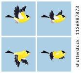 vector illustration of cartoon ...   Shutterstock .eps vector #1136987873