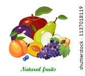 fresh juicy fruits and berries... | Shutterstock .eps vector #1137018119