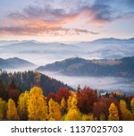 autumn landscape with a... | Shutterstock . vector #1137025703