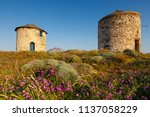 old traditional windmills on... | Shutterstock . vector #1137058229