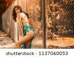 hot sexy brunette in a...   Shutterstock . vector #1137060053