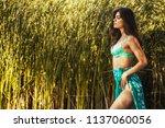 hot sexy brunette in a...   Shutterstock . vector #1137060056