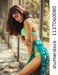 hot sexy brunette in a...   Shutterstock . vector #1137060080