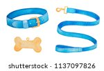 Stock photo pet supplies and walking gear collection buckle collar lead and bone shaped identification tag 1137097826