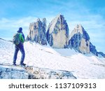 backpacker on trip aound  tre... | Shutterstock . vector #1137109313
