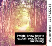 quote   i wish i knew how to... | Shutterstock . vector #1137132266