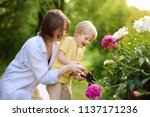 cute little boy with his young... | Shutterstock . vector #1137171236