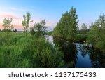 spring time rural sunset in...   Shutterstock . vector #1137175433