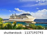cruise ship docked at tropical... | Shutterstock . vector #1137193793
