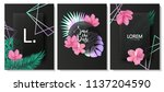 luxury cards collection with... | Shutterstock .eps vector #1137204590