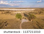 campsite at baines baobab from... | Shutterstock . vector #1137211010