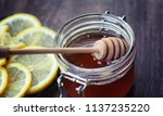 tea with lemon and mint in... | Shutterstock . vector #1137235220