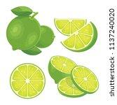 green lemon fresh | Shutterstock .eps vector #1137240020
