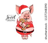 pig in a santa's red costume... | Shutterstock .eps vector #1137248390