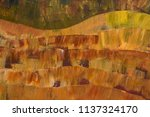 modern landscape. shades of... | Shutterstock . vector #1137324170