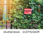 red mail box in front of a... | Shutterstock . vector #1137422639