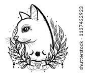 sketch graphic illustration cat ... | Shutterstock .eps vector #1137432923