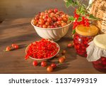 summer beautiful food... | Shutterstock . vector #1137499319