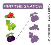find the right shade of fruit.... | Shutterstock .eps vector #1137518540