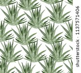 seamless vector pattern with... | Shutterstock .eps vector #1137571406