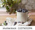 honeysuckle berry in metal cup... | Shutterstock . vector #1137631394