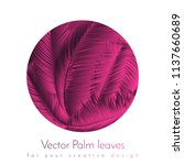 pink palm leaves. exotic plants ... | Shutterstock .eps vector #1137660689