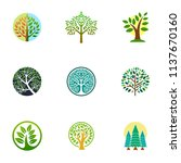 green tree logo icon. natural... | Shutterstock .eps vector #1137670160