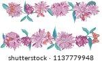 aster with butterflies  daisy... | Shutterstock .eps vector #1137779948