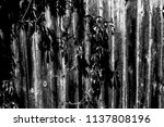 abstract background. monochrome ... | Shutterstock . vector #1137808196