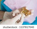 dentist close up | Shutterstock . vector #1137817040