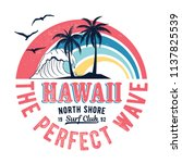 Vintage Hawaii Theme Text With...