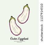 hand drawn vector illustration... | Shutterstock .eps vector #1137914510