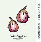 hand drawn vector illustration... | Shutterstock .eps vector #1137914516