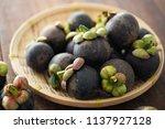 mangosteen tropical fruit   Shutterstock . vector #1137927128
