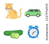 set of vector for learning and... | Shutterstock .eps vector #1137976919