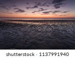 low tide beach at dusk ... | Shutterstock . vector #1137991940