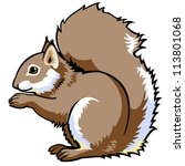 squirrel vector side view image ... | Shutterstock .eps vector #113801068