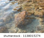 stones on the beach of the... | Shutterstock . vector #1138015274