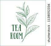 green tea tree branch herb... | Shutterstock .eps vector #1138052336