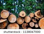 natural wooden background  ...   Shutterstock . vector #1138067000