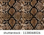 Snake And Leopard Skin Pattern