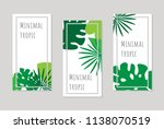 set of banners with tropical... | Shutterstock .eps vector #1138070519