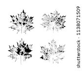 black and white vector... | Shutterstock .eps vector #1138071509