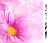 Stock photo abstract floral backgrounds for your design 113816950