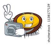 photographer sea urchin mascot... | Shutterstock .eps vector #1138177139