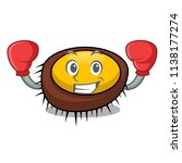 boxing sea urchin character... | Shutterstock .eps vector #1138177274