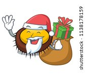 santa with gift sea urchin... | Shutterstock .eps vector #1138178159