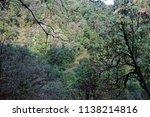 rocky steps in the forest with... | Shutterstock . vector #1138214816
